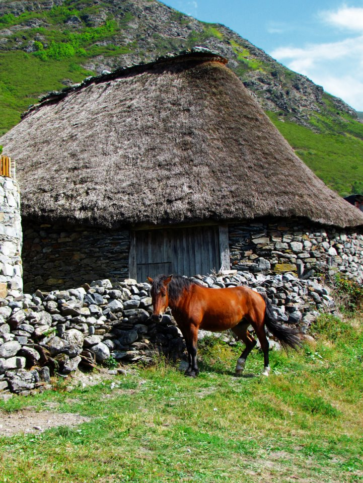 Casas rurales en el descubrir el bierzo - Casa rural bierzo ...